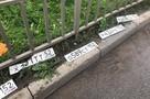 После дождя на дорогах Нижнего Новгорода валяются десятки автомобильных номеров