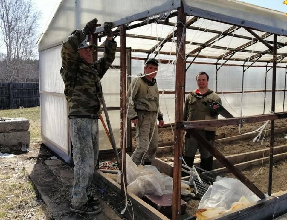Жители усадьбы строят теплицы и выращивают овощи Фото: vk.com/semeinaya_usadba