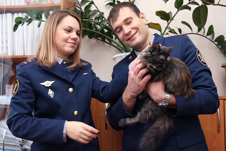 Кошку злоумышленники пытались использовать для доставки наркотиков в колонию. Фото: ФСИН