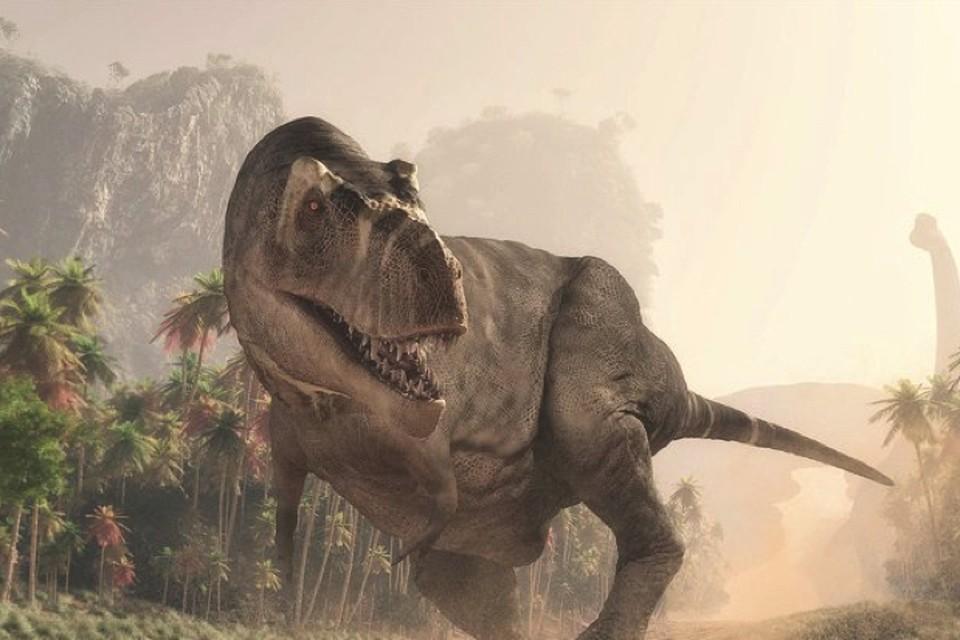 Динозавры были далеки от людей - и во времени и в пространстве.