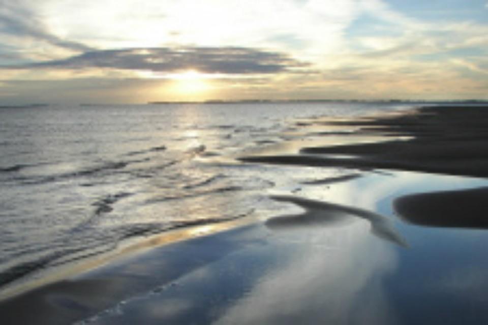 В Хабаровском крае грязное озеро Голое очистили от нефтепродуктов ФОТО: Комсомольская-на-Амуре межрайонная природоохранная прокуратура