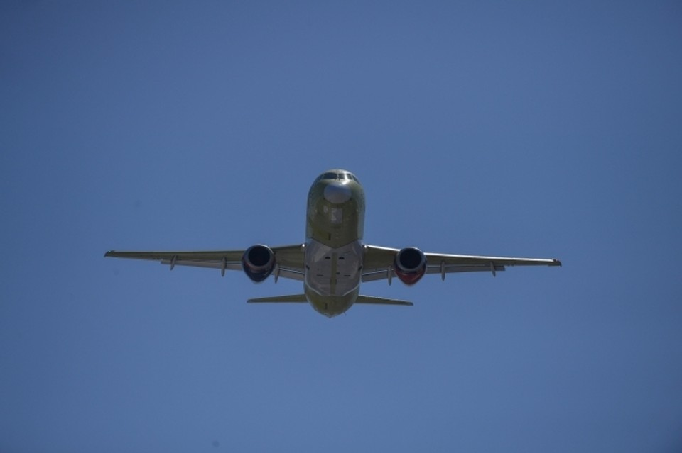 Самолет в Хабаровском крае вынуждено кружил в воздухе из-за собаки