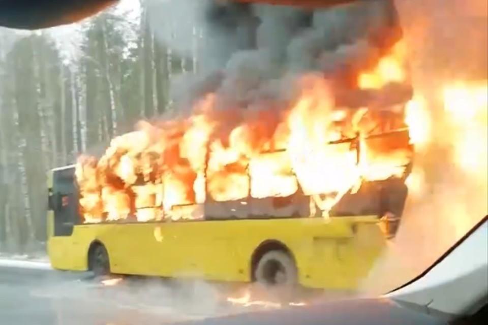 Автобус полностью охватило пламя. Фото: скриншот видео.