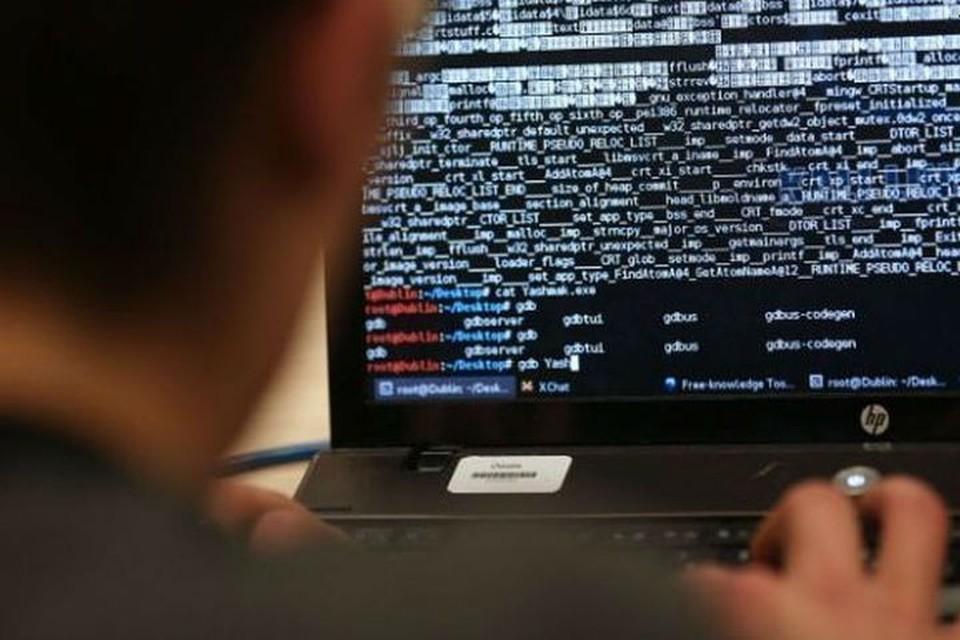 """""""За тягу к знаниям"""" - уголовное дело: сибиряк получил штраф за компьютерную атаку."""
