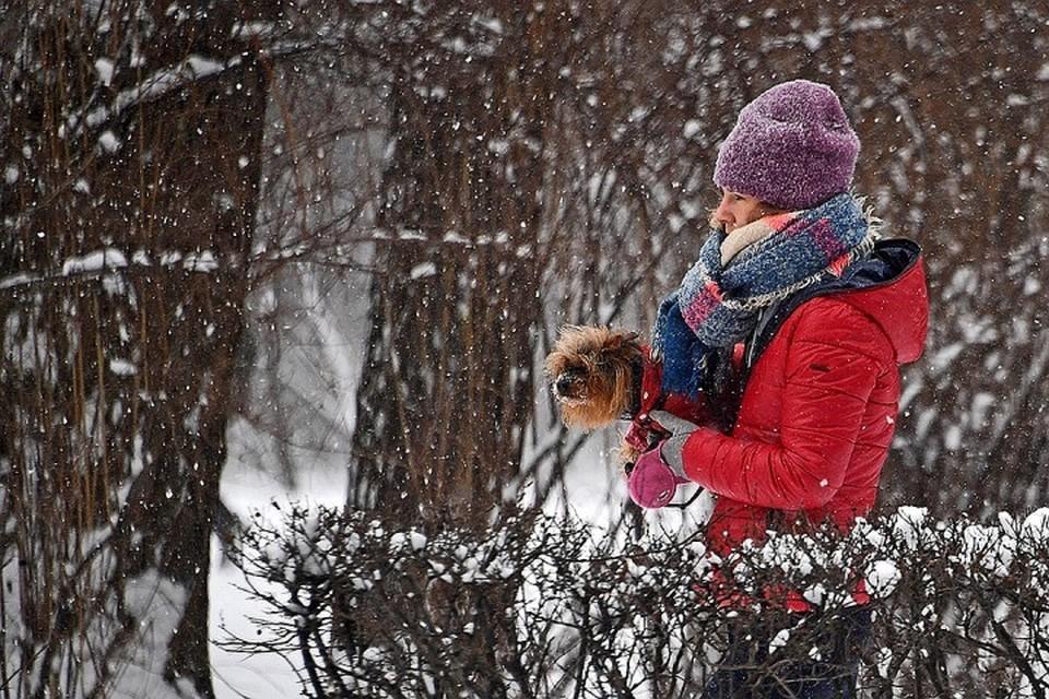 До +7, мокрый снег и гололед: какой будет погода с 6 по 9 декабря
