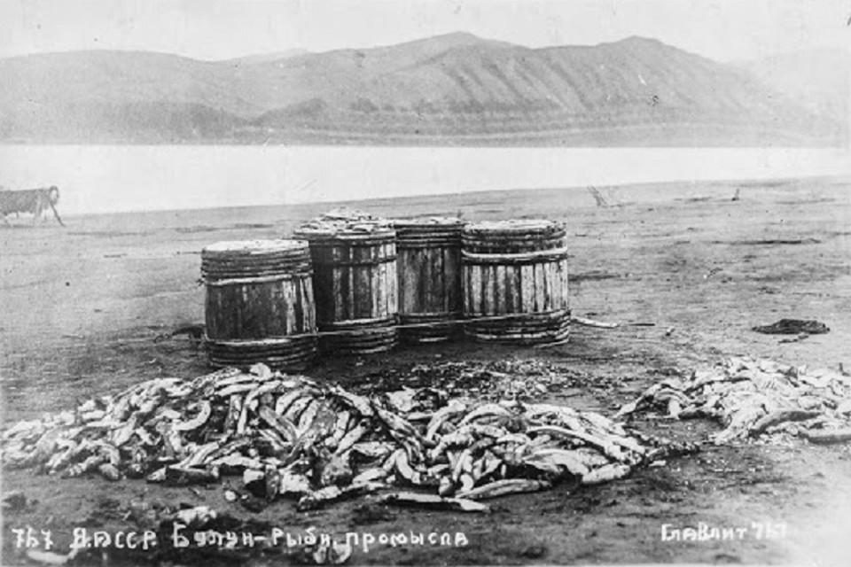 Рыбный промысел в Булунском районе. Фото из архива Якутского государственного музея им. Е. Ярославского.