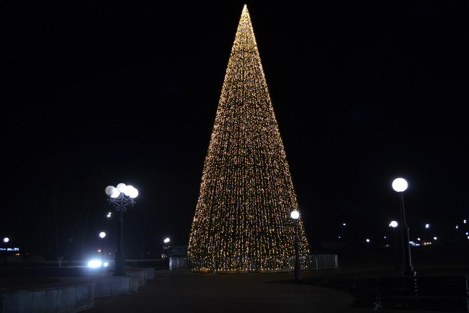 Новогодняя елка на площади Петра Великого в Липецке