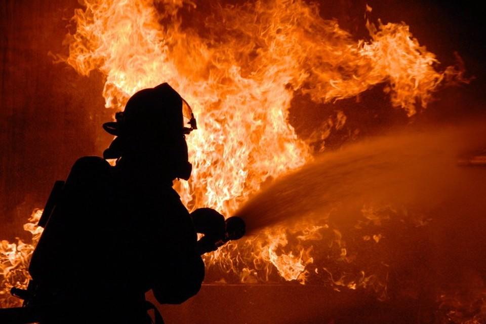 Пожарные вовремя пришли на помощь оказавшейся в огненной ловушке 80-летней жительнице Енакиево. Фото: ptzgovorit.ru