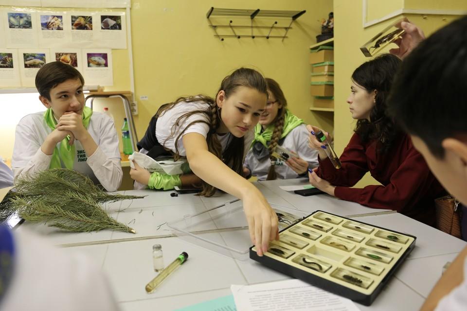Юные экологи не только исследуют окружающий мир, но и думают, как сохранить природу и ее богатства.