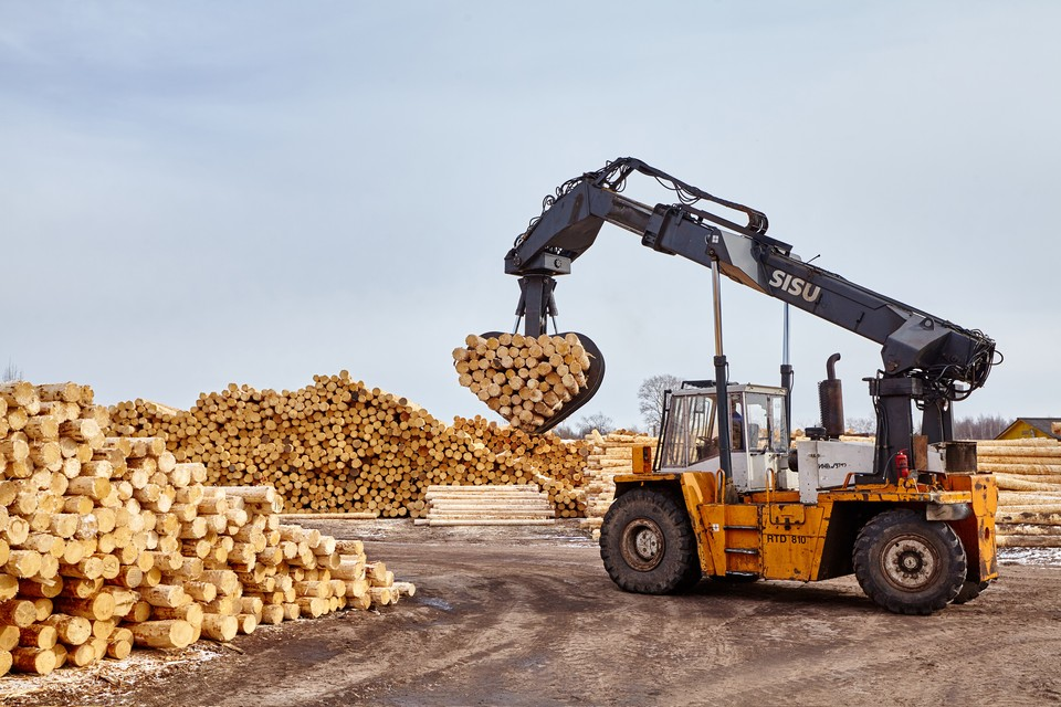Работа лесной биржи: Лес - уникальное возобновляемое сырье. Главное, не забывать его восстанавливать. Фото: предоставлено пресс-центром Segezha Group