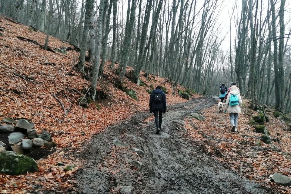 На ЮБК можно пойти в поход по заповедным местам.