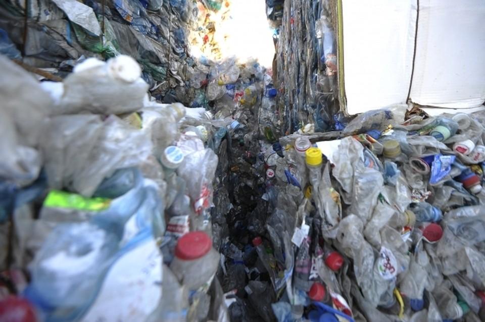 Пластиковые бутылки оказались отличным сырьем для производства модной одежды