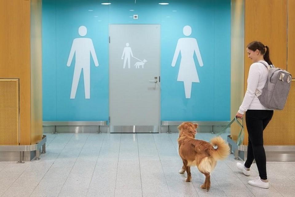 В аэропорту Хельсинки открылись туалеты для собак. В том числе для стеснительных. Фото: finavia.fi