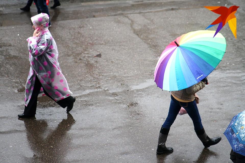 В этом году впервые за историю метеонаблюдений в Беларусь не пришла зима.