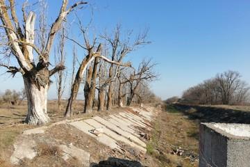 В Киеве начали прозревать: Эксперты оценили предложение украинского политика о подаче воды в Крым