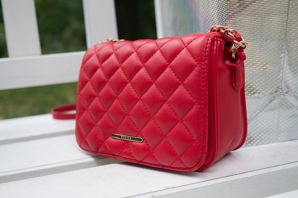 Дамская сумочка воровки оказалась действительно бездонной. Фотоиллюстрация: pixabay.com.