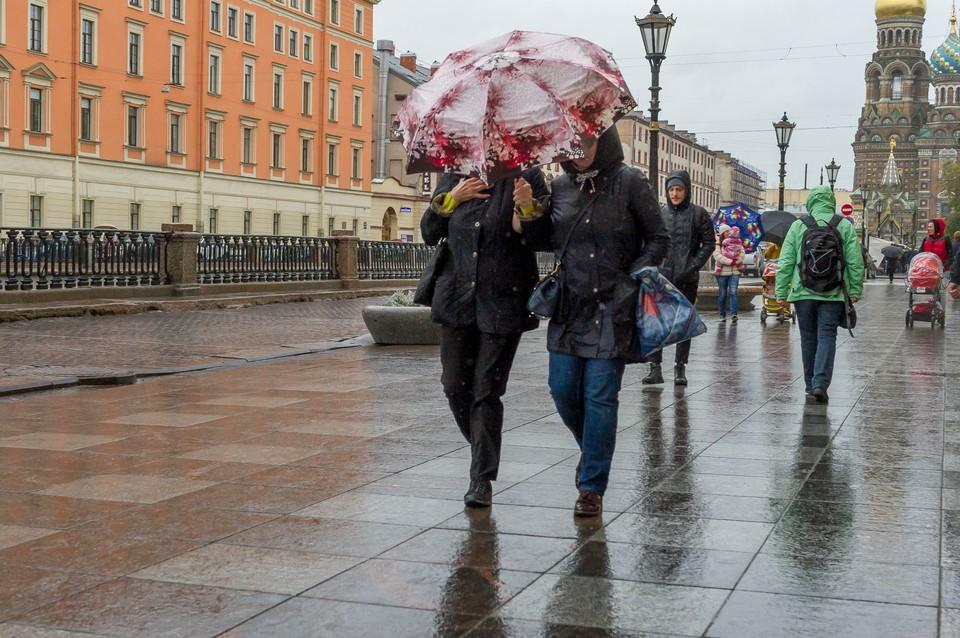 Сильный ветер ожидается в Петербурге 16 февраля.