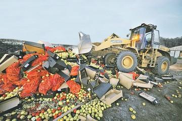 Уничтожение санкционной еды: Может, все-таки раздавать бедным продукты
