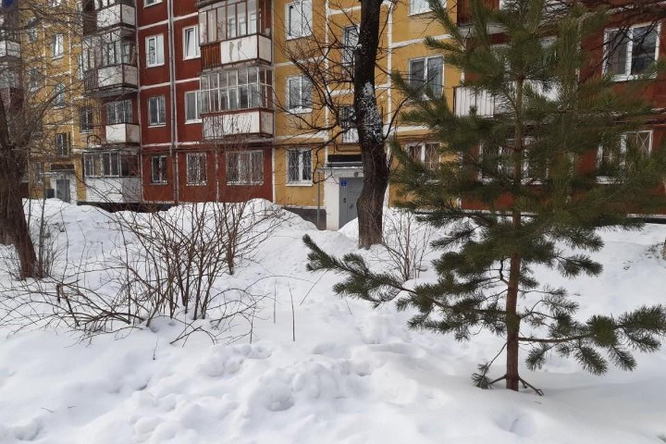Во дворе пятиэтажки нашли пакет с туловищем убитой женщины.