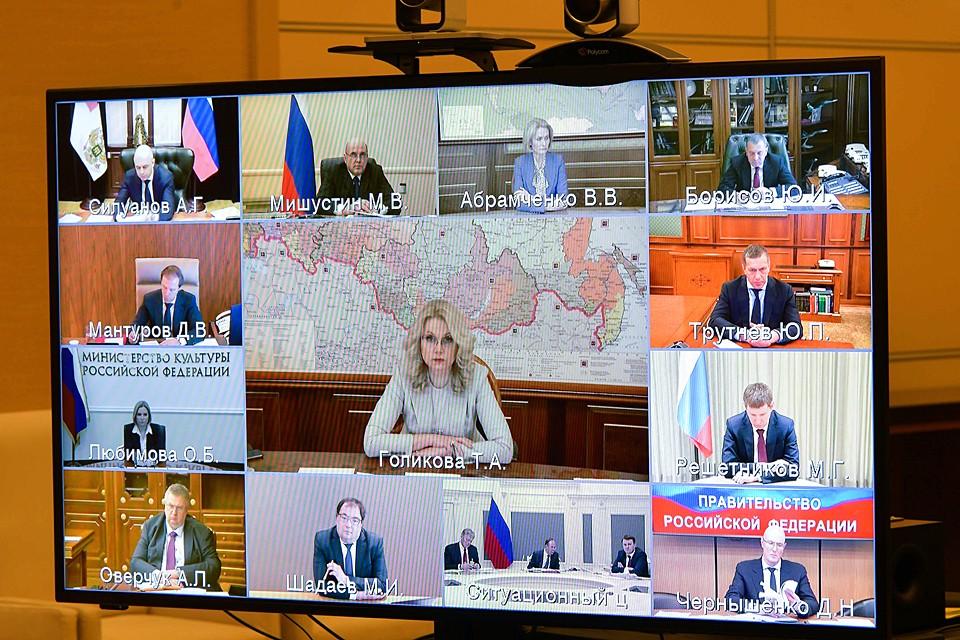 Президент провел совещание с членами правительства РФ в режиме видеоконференции. Фото: Алексей Дружинин/ТАСС