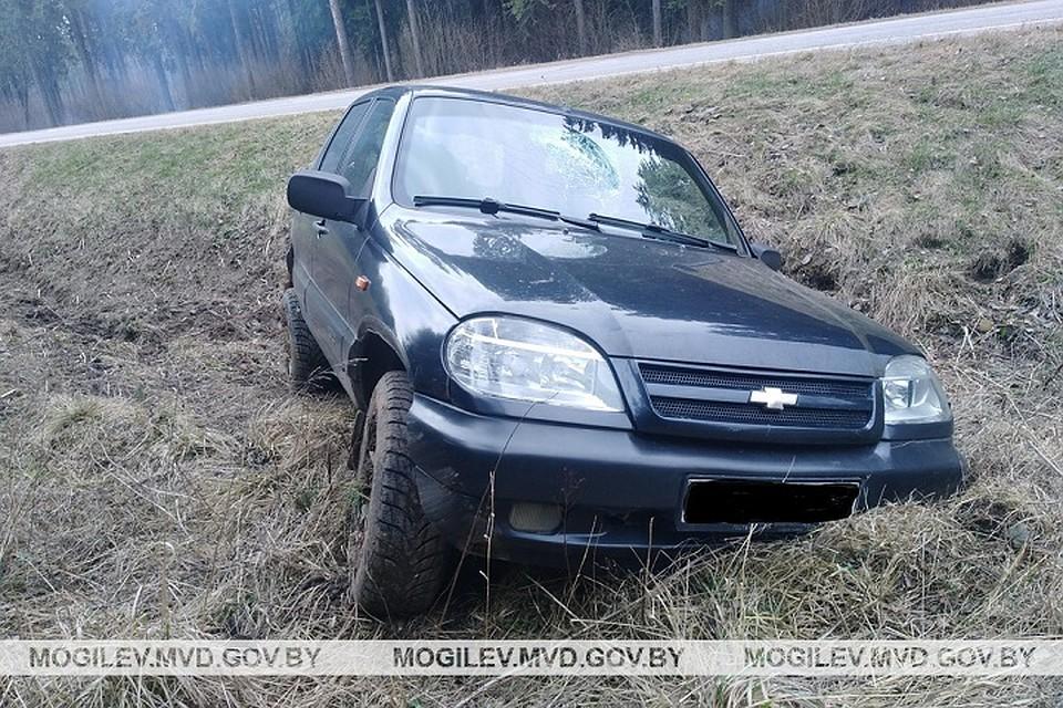 Под Шкловом «Нива» оказалась в кювете: пострадали водитель и пассажир