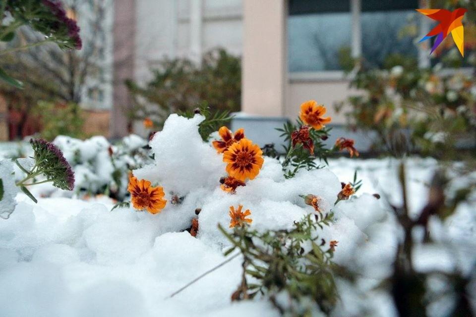 Днем будет лето, а ночью - зима!