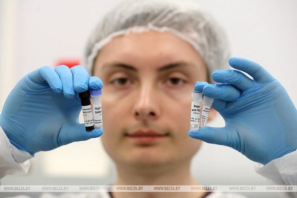 Белорусскими тестами для диагностики коронавируса сначала обеспечат Витебскую область. Фото: belta.by.