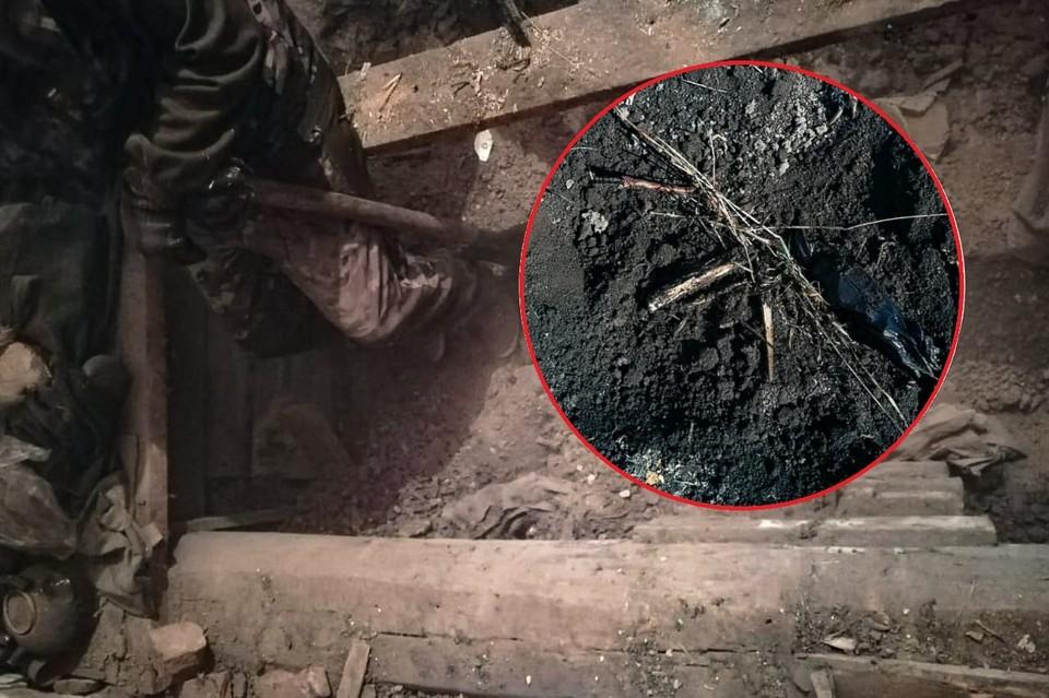 Тела были найдены в погребе. Фото: СКР по Новосибирской области.