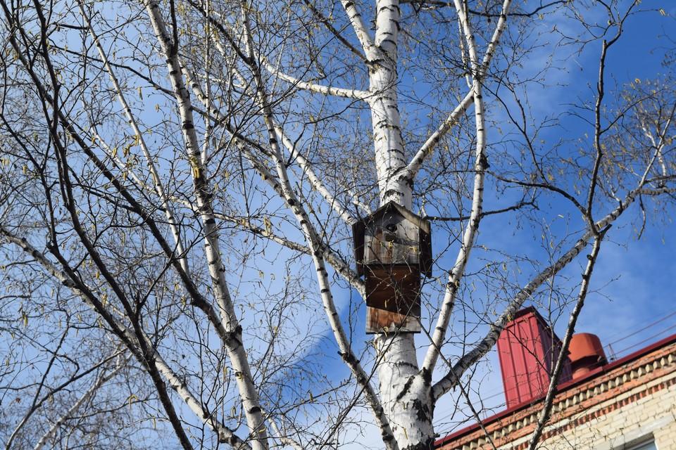Погода на Ямале 14 мая: температура воздуха поднимется до +15 градусов