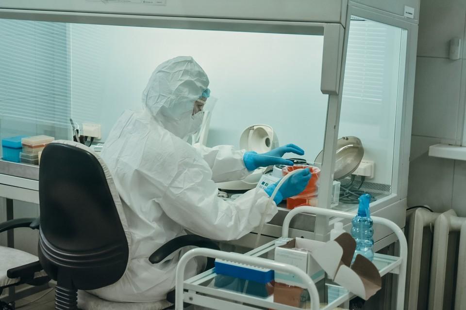 В области провели уже более 30 тысяч исследований на вирус. Фото: amurobl.ru