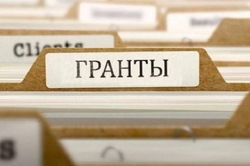 Для многих молдавским НПО главное - это гранты (Фото: grin.md).