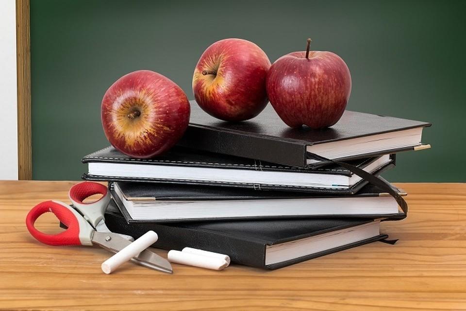 Как тюменским школьникам в каникулы не растерять школьные знания?
