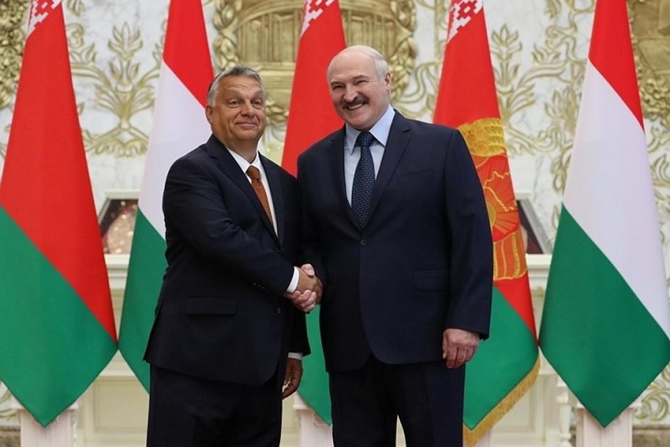 Орбан и Лукашенко обсудили необходимость увеличения товарооборота между странами. Фото: belta.by.