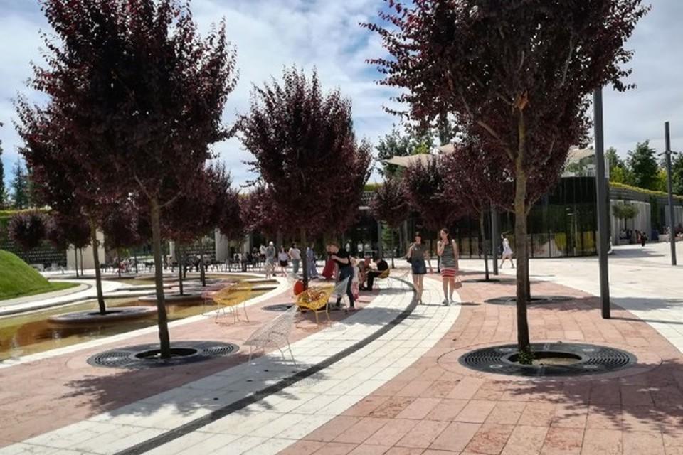 Уже утром в первый день открытия после карантина в парк пришло много людей