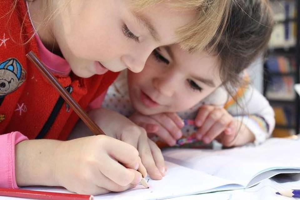 Согласно поправкам именно детей предлагают сделать важнейшим приоритетам страны. Фото: pixabay.com