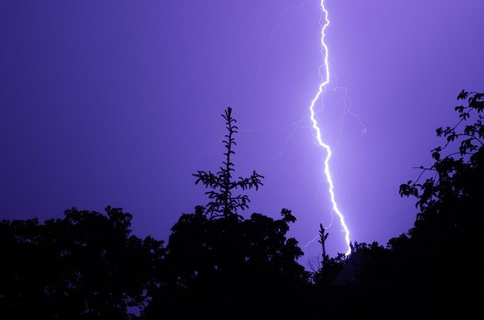 В московском парке в людей ударила молния