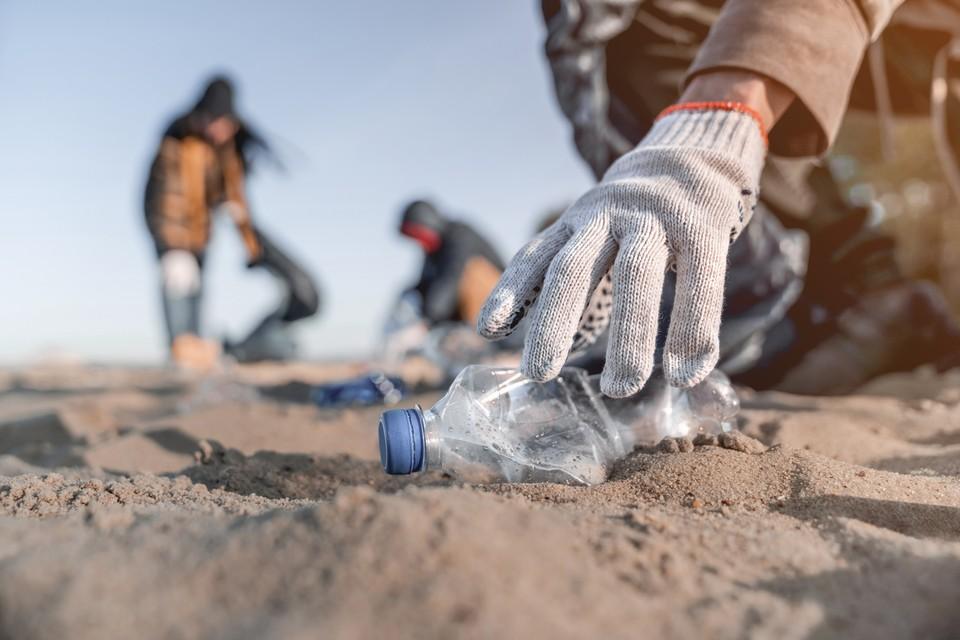 Микропластик может вредить урожаю. Фото: shutterstock.com.