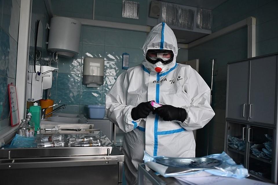 Из-за вспышки бубонной чумы в Монголии ввели бессрочный карантин