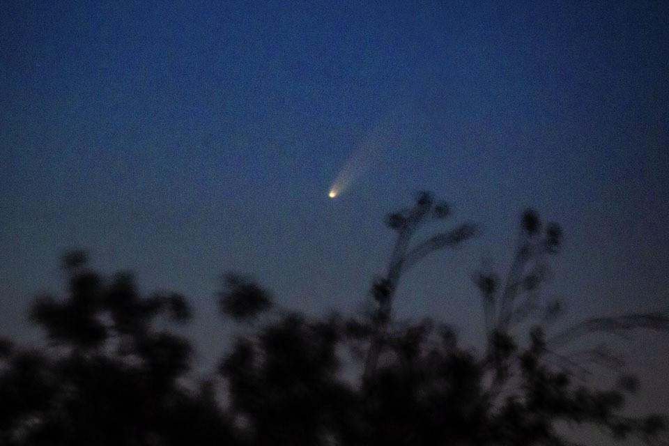 Комета появилась неожиданно и стала самой яркой за последнее десятилетие.