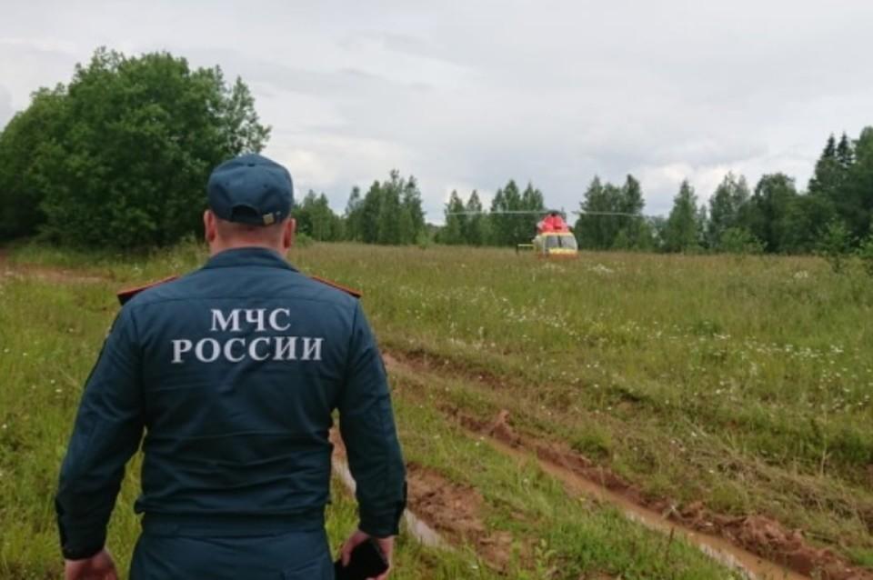 Поисковик подорвался на мине времен ВОВ и получил тяжелые травмы в Ленобласти. Фото: 47.mchs.gov.ru