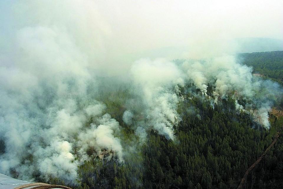Всего сейчас в разных регионах страны насчитывается 187 «горячих» точек на площади более 44,4 гектаров.