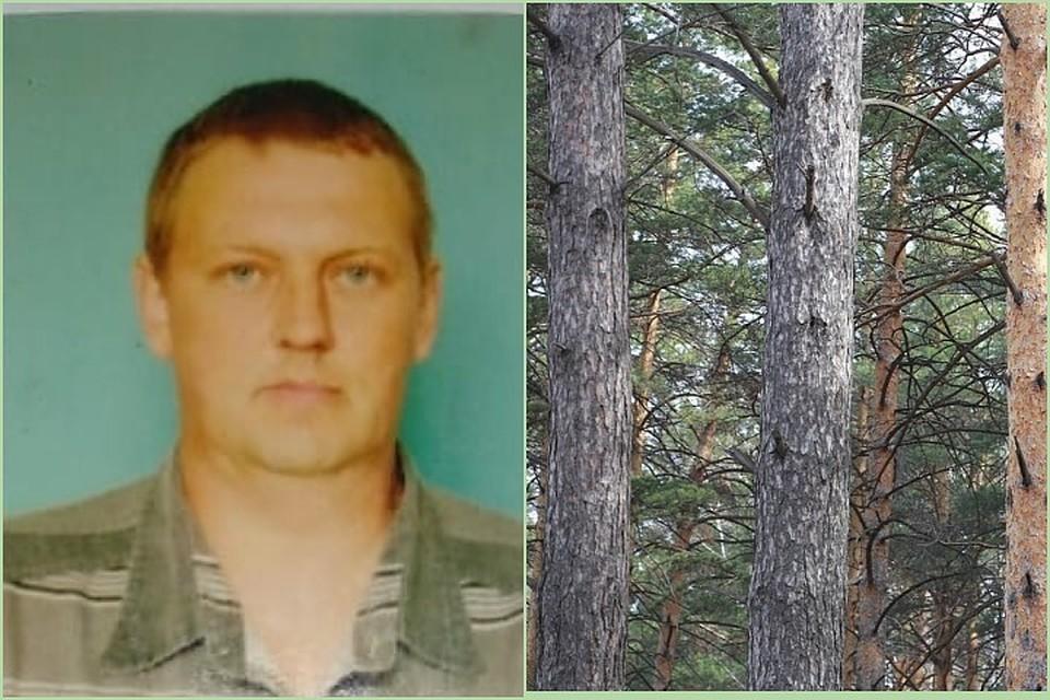 «Думали, медведь убил»: пропавший в Красноярском крае в глухой тайге грейдерист через 13 дней вышел к людям