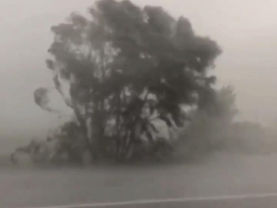 На Новомихайловский обрушилась непогода. Фото: t.me/typodar
