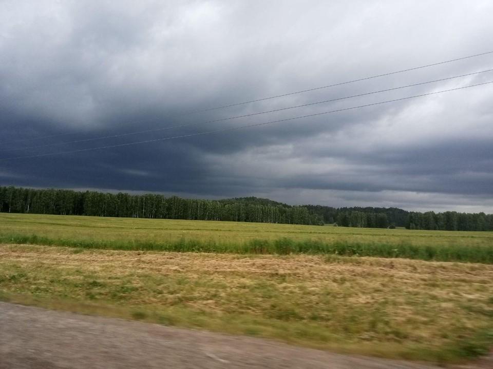 Сильные дожди возможны 3 и 4 августа.