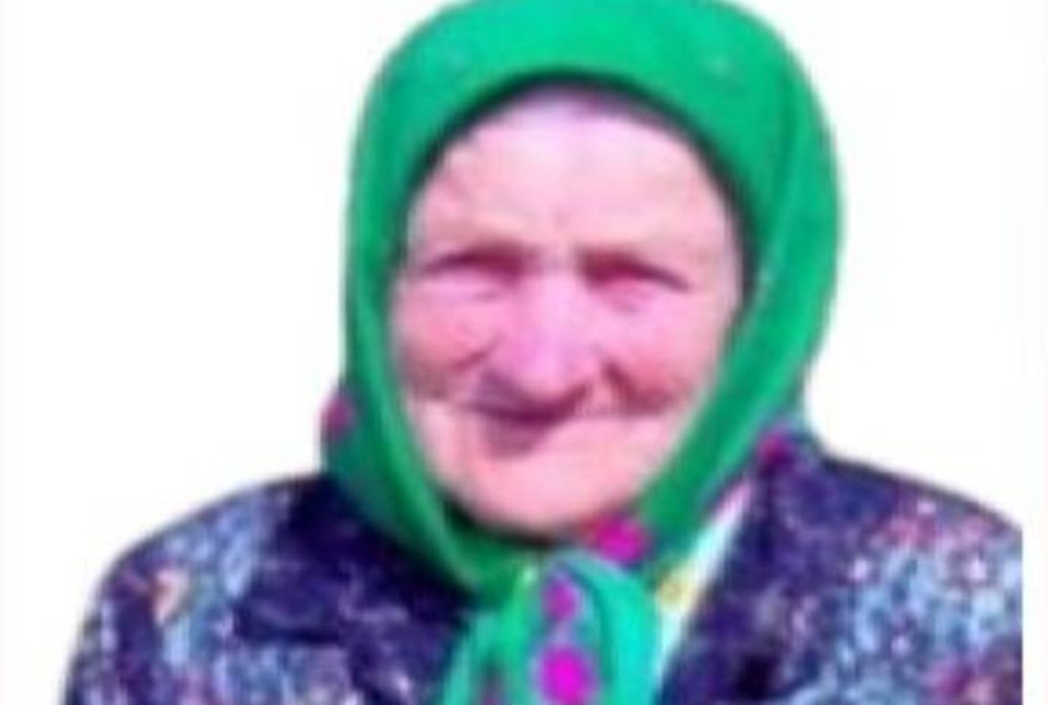 «Уже четыре дня ни слуху, ни духу»: 93-летняя бабушка заблудилась в лесу под Нижним Новгородом.