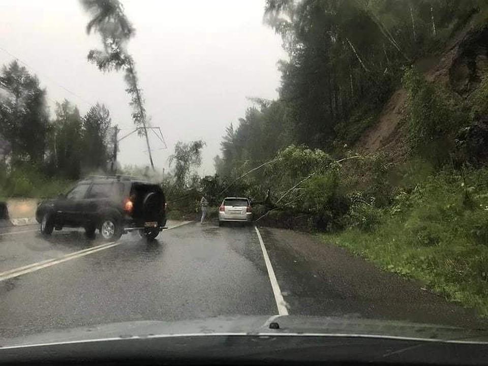 Земля, щебень и деревья обрушились на дорогу Фото: соцсети