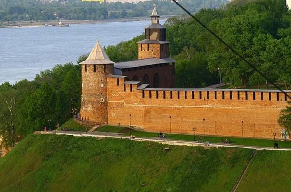 Опубликованы предварительные итоги голосования за талисман 800-летия Нижнего Новгорода.