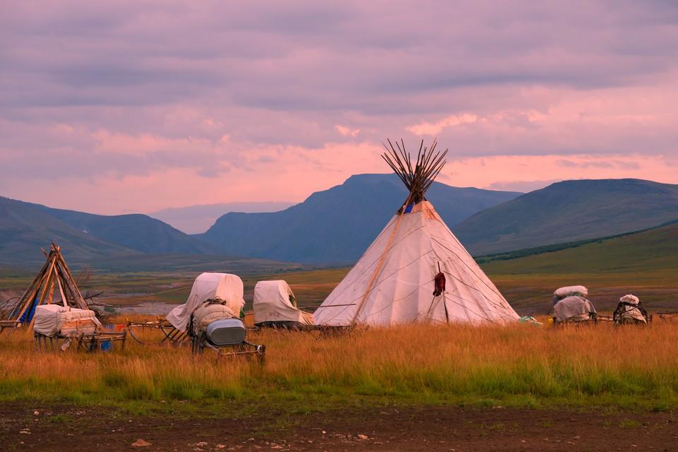 Полуостров является местом произрастания и обитания десятков видов животных и растений, и родным домом для коренных народов. Фото: shutterstock.com.