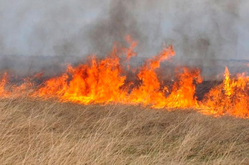 За сутки в регионе произошло 33 пожара, в 28 случаях спасатели боролись с возгораниями сухой травы и мусора