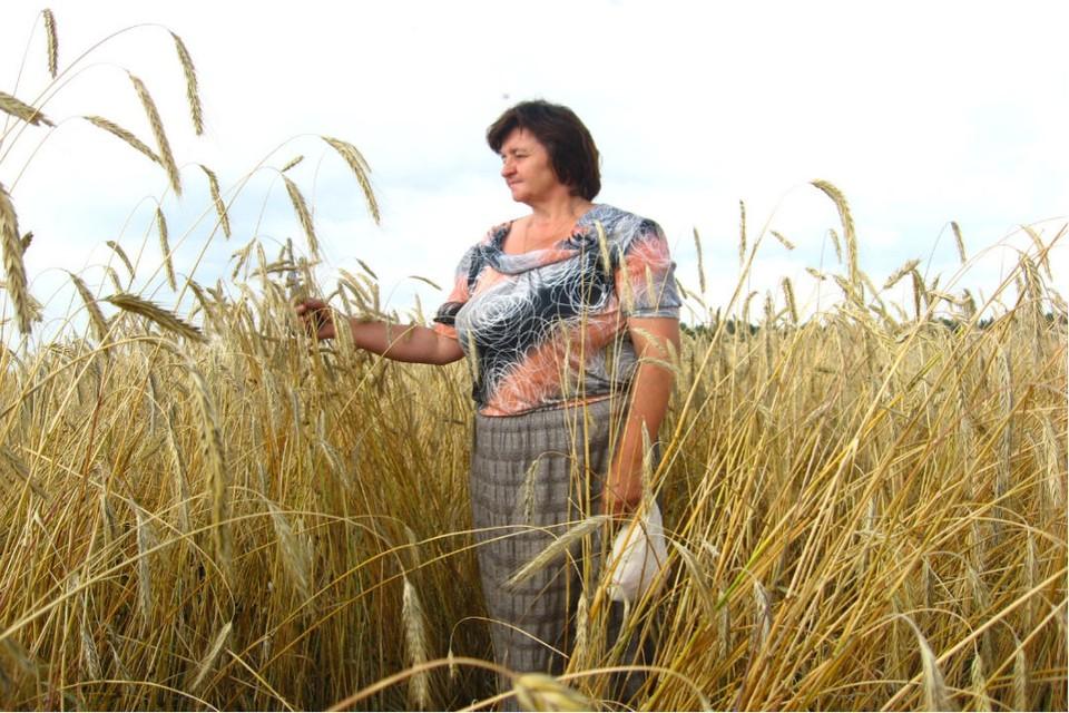Агроном Елена Зязева рассказала, что получать стабильно высокие урожаи можно только применяя целый комплекс агротехнических мероприятий. Фото: предоставлено героем публикации
